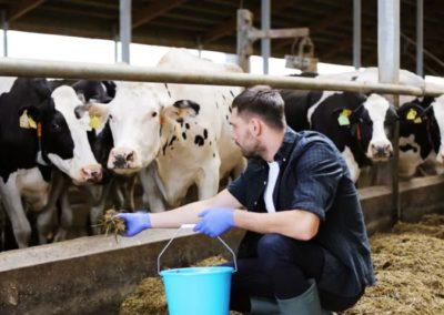 Le monde de l'agriculture s'intéresse au mentorat